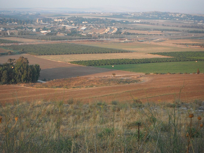 View of Masha (Center) with 'Ein Jezreel to the Left.